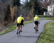 669809_cyclists